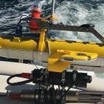 Arbeiten im Schwarm: Autonome Tauch-Roboter