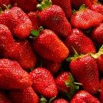eCommerce hat seinen Preis – Online-Handel von Lebensmitteln wächst kaum