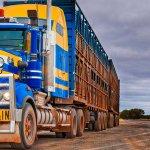 Transportgiganten (1): Road Trains – Könige der Straße